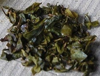 Jin Xuan Raureif Oolong Winter-Tee, nasse Blätter