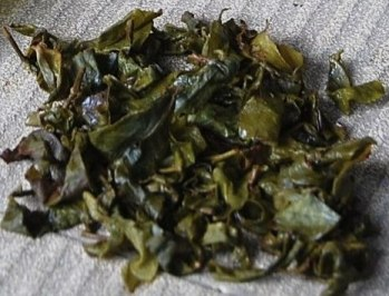 Jin Xuan Hoarfrost Oolong winter tea from Doi Mae Salong, north Thailand
