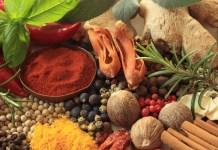 Tips Bisnis Bumbu Resep Masakan Sederhana, Di Jamin Cepat Panen Laba