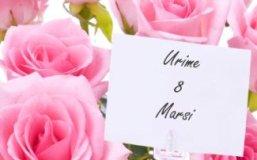8 Marsi nuk eshte vetem dita e nenave, eshte Dita Nderkombetare e Femrave