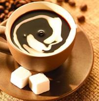Rrezik! Asnjehere mos pini kafe me stomak bosh. organizem