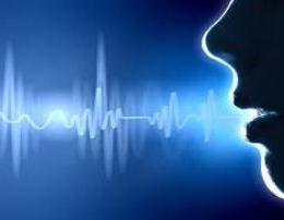 Disa kuriozitete rreth zerit te njeriut. zeri