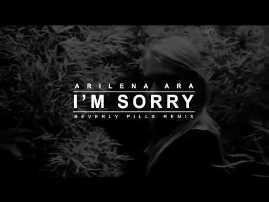 I'm Sorry - Arilena Ara (Lyrics)