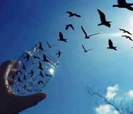 Shkoj me qejf, se dashurova Ia kam falë zemrën të gjithëve Nuk të le sekondin vetëm - Vaso Papaj (Poezi)