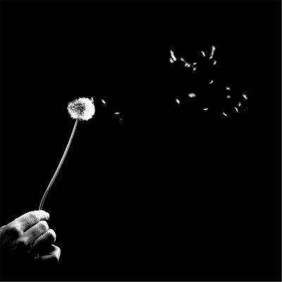 Heshtja - Dritero Agolli (Poezi)