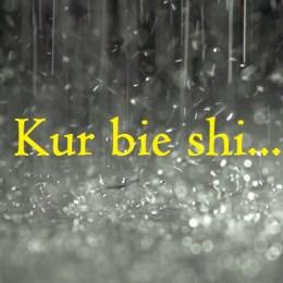 Kur shiu bie...(Histori dashurie) perqafim