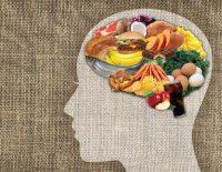Ushqimet qe rrisin perqendrimin dhe funksionin e trurit, frutat e thata