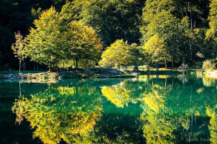 Lac de Bethmale, Ariege-Pyrenees