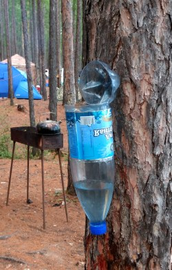 upside-down water bottle nailed to a tree for washing up
