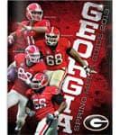 2013 UGA Football Spring Media Guide