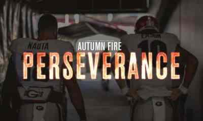 Autumn Fire - Perseverance