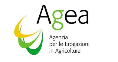 Concluso pagamento anticipi Pac 2016: 1 miliardo di euro agli agricoltori