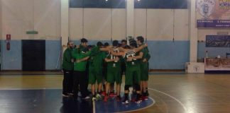 fp sport - green palermo