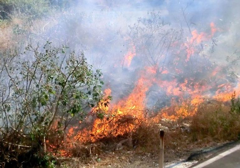 """Forestali e antincendio, Pino Mandrà (Cgil): """"Dopo le fiamme che hanno messo a rischio le città, governo regionale fornisca risposte reali"""""""