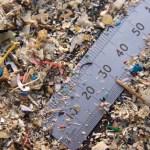 Plastica, microplastiche e salute: oltre il danno ambientale