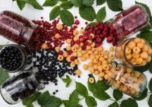 Preserviamo i frutti rossi made in Italy