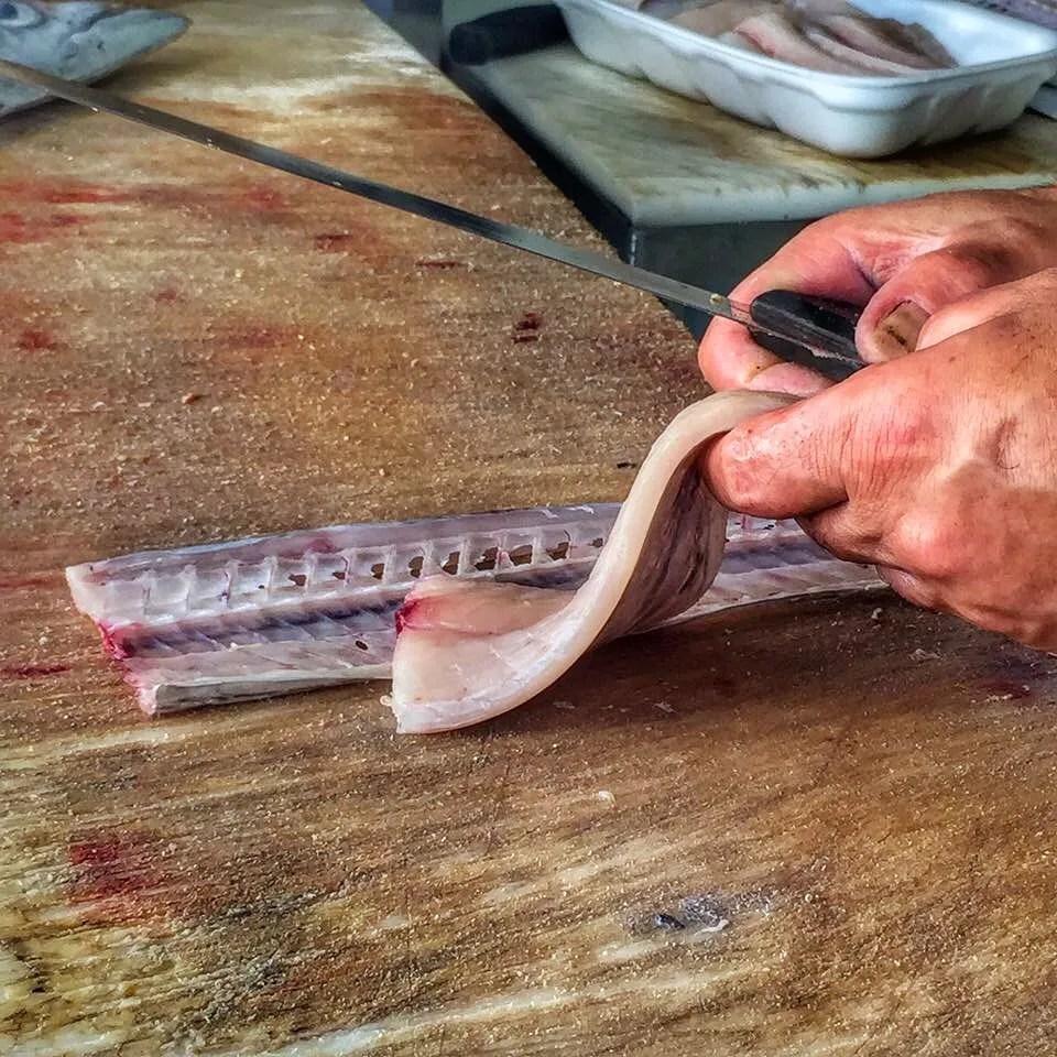 La spatule, ou drapeau de poisson