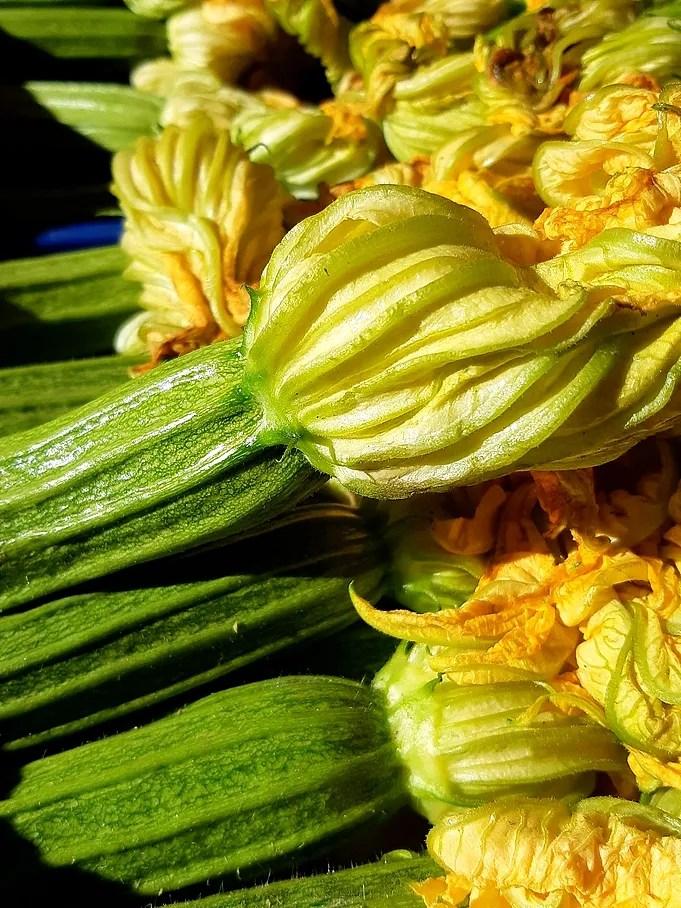 Zucchine, di stagione da marzo