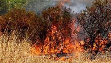 #Messina. Prevenzione incendi: intervento dell'assessore Ialacqua