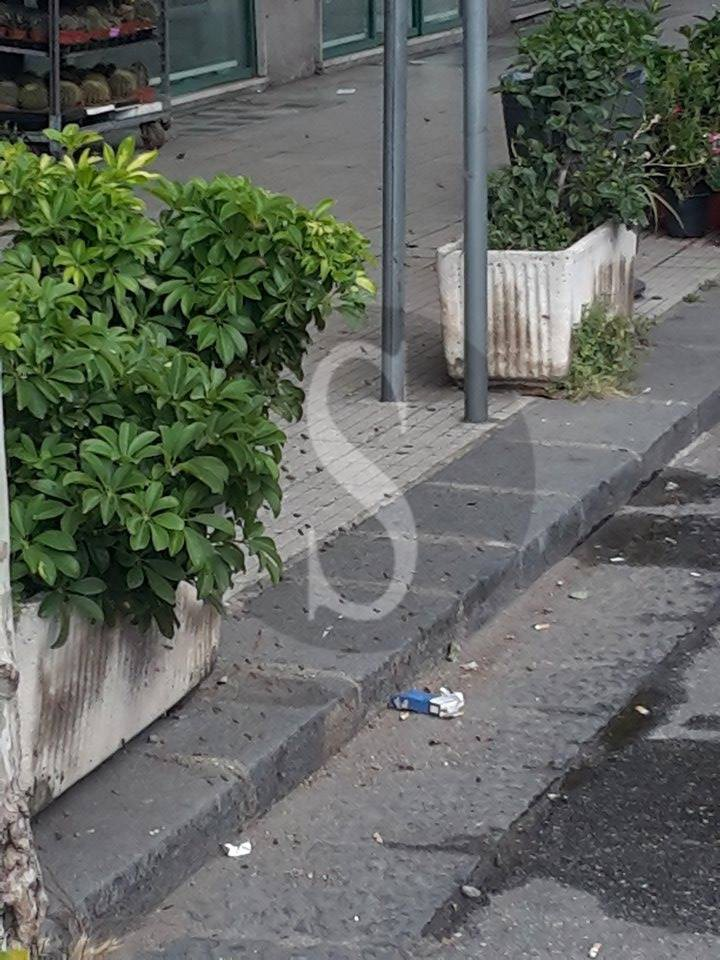 #Messina. Via Garibaldi invasa da uno sciame di api