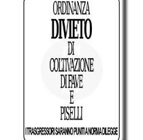 #Messina. Favismo, un caso in contrada Baglio
