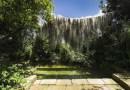 Ambiente, insediato un tavolo tecnico-scientifico per gli alberi monumentali della Sicilia