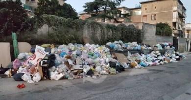 """Impiantistica rifiuti, Lo Giudice: """"Messina territorio virtuoso recupera i ritardi"""""""