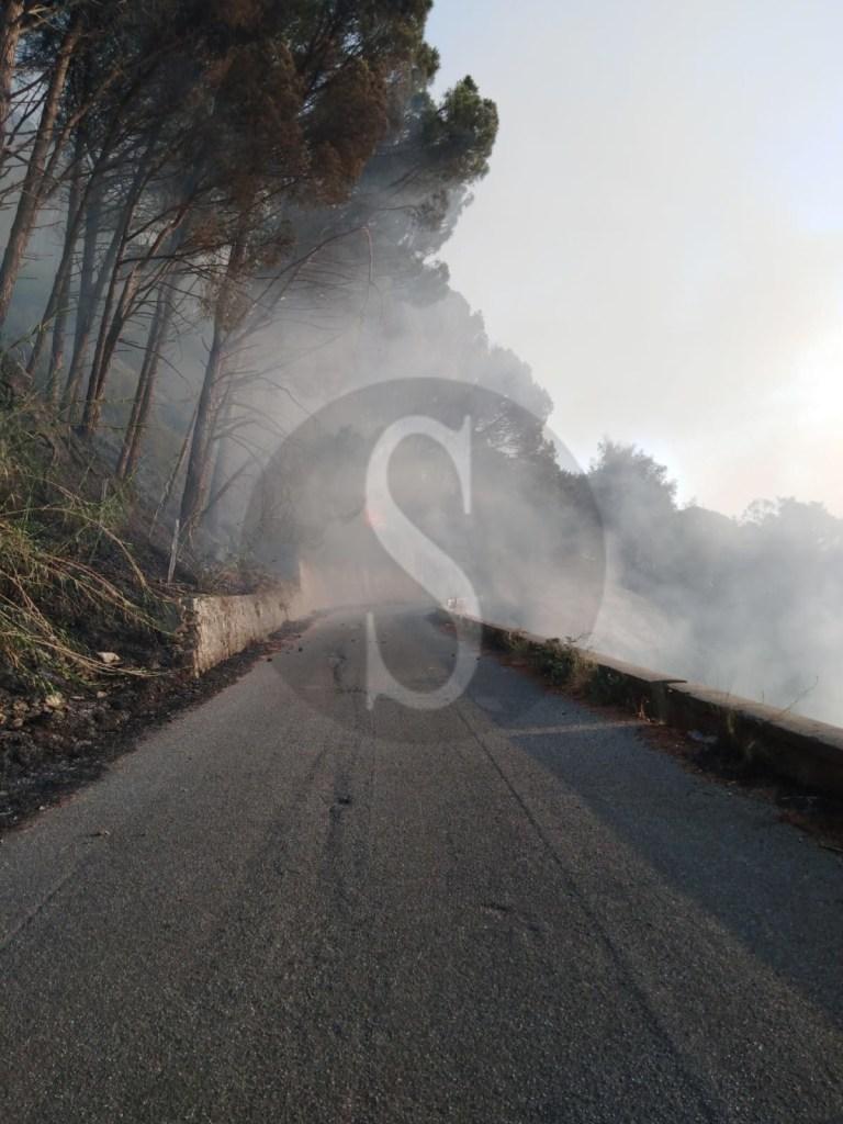 Incendi boschivi, roghi divampano nella Valle del Mela e a BarcellonaPG