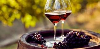 vitivinicoltori