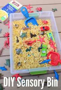 Occupational therapy activity-  sensory bins