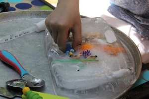 Occupational therapy activity- toys in  ice blocks