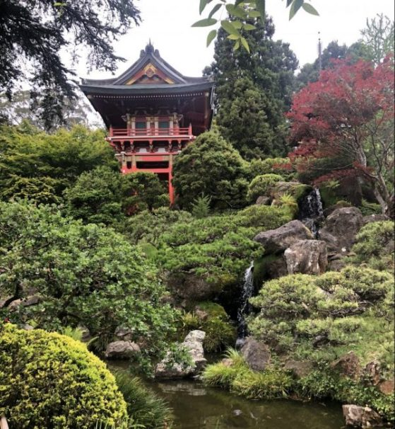Japanese Tea Garden Buildings and Waterfall