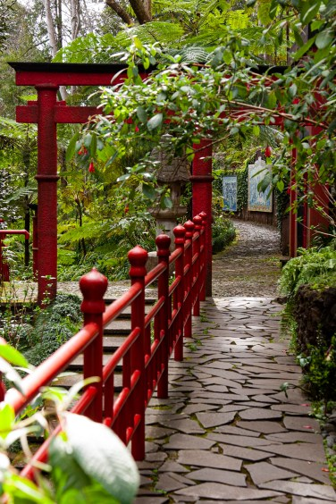 Monte Botanical Garden, Funcha,l Madiera