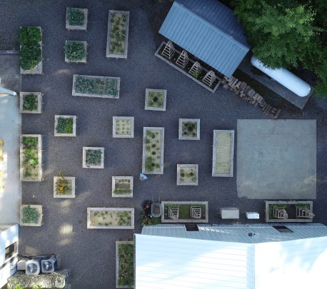 Mr. Freidas Organic Garden at Petronio Residency Center Photo by Jean Marc Flack