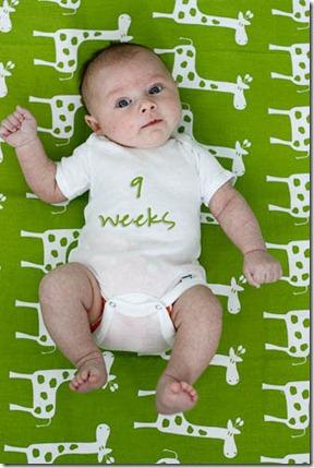9 week old baby