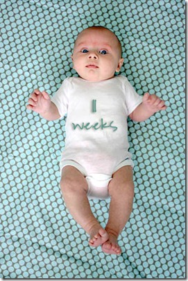 11 week baby