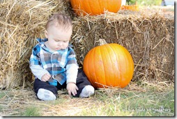 pumpkin-patch-baby-5255