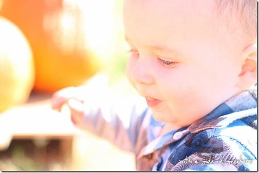 baby at pumpkin patch