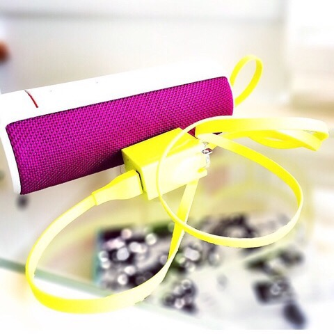 ueboom bluetooth speaker