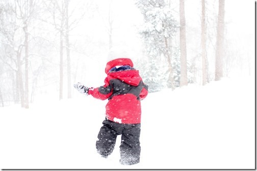 improve immunity in winter