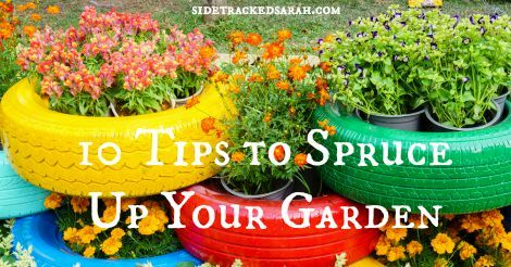 10 Tips to Spruce up Your Garden