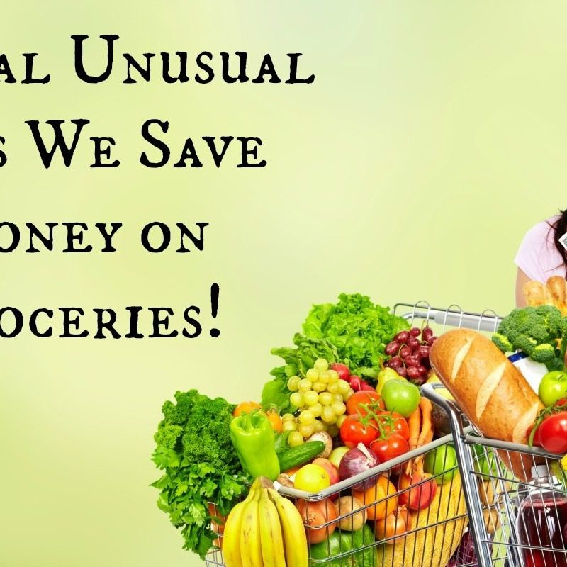 Several Unusual Ways We Save Money on Groceries