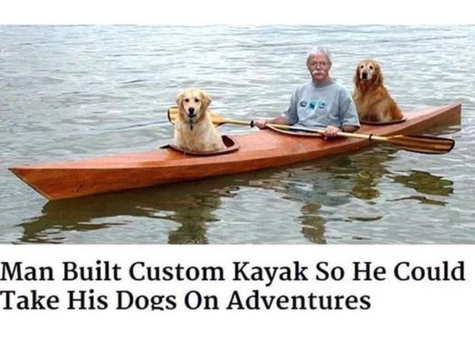 dog meme kayak