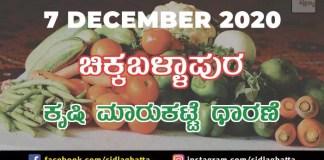 Chikkaballapur Agriculture Market Daily Rate Farming Products Farmers Minimum Fair Price