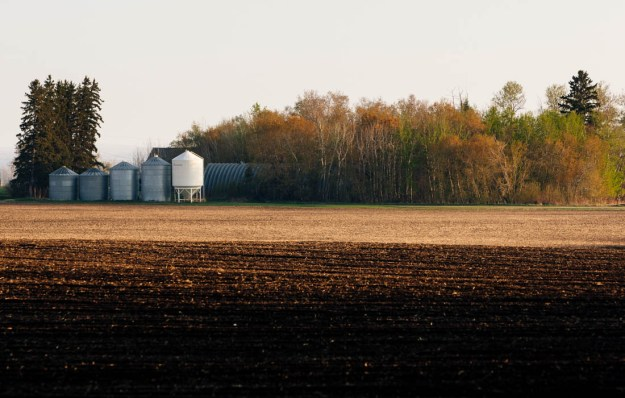 Grain silos and crop field after a spring sunrise. Alberta agriculture landscape.