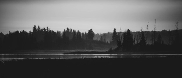 Astotin Lake Islands during a light foggy, autumn sunrise at Elk Island National Park, black and white Alberta landscapes. Copy space horizontal.