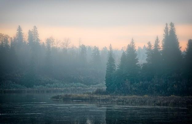 Foggy autumn sunrise over Astotin Lake Islands at Elk Island National Park, Alberta landscape. Copy space horizontal.