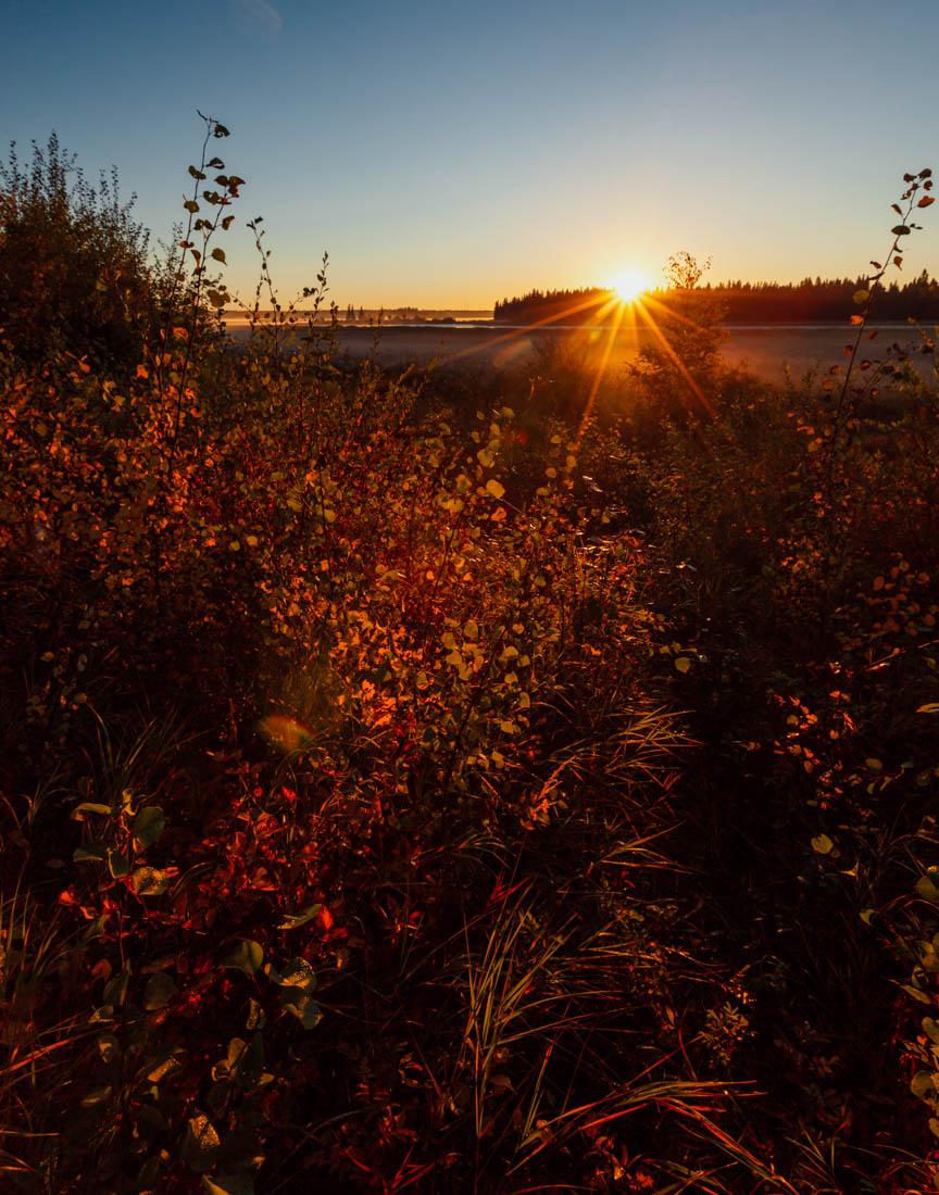 Autumn sunrise looking towards the east islands at Elk Island National Park, Alberta landscape.