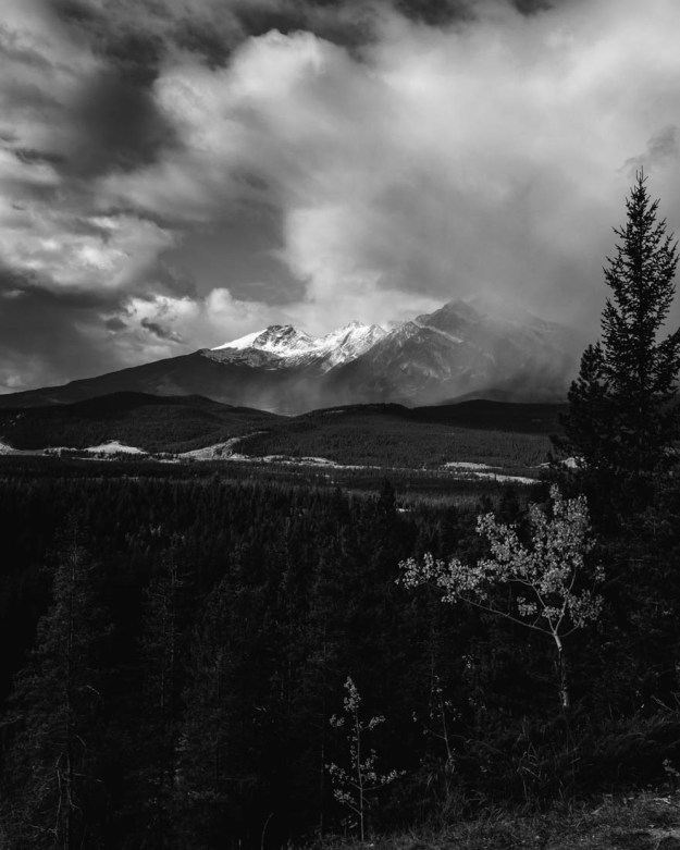 Black and white fine art Alberta landscape of the Athabasca Hanging Valley in Jasper National Park during a cloudy autumn afternoon.