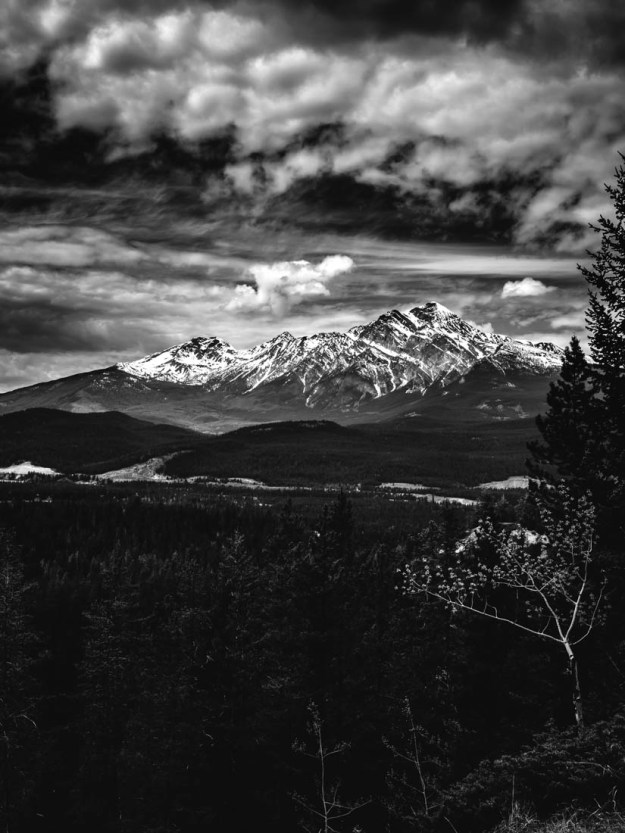 Cloudy afternoon overlooking the valley in the Canadian Rockies, black and white Alberta landscape.
